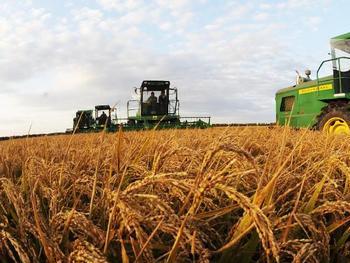 种植业高质量发展取得新成效